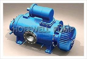 CE Approved 2W. W Multi-Phase Twin Screw Pump pictures & photos