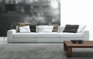 Divany Series Furniture Living Room Modern Style Sofa pictures & photos