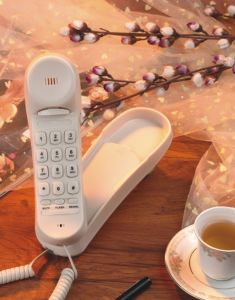 Orbita Hotel Bathroom Telephone with Waterproof Function pictures & photos
