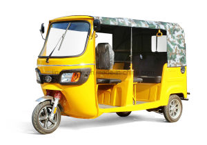 Electric Passenger Tricycle with 3000W 5seats