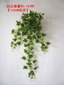 Chinese Plant Artificial Grass IVY for Wall Decoration pictures & photos