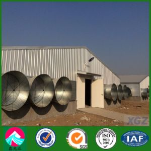 Customized Prefabricated Light Steel Poultry House/Chicken House (XGZ-A035)