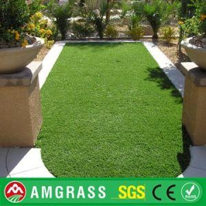 Astro Turf Garden >> China Flooring Astro Turf Garden Carpet China Garden
