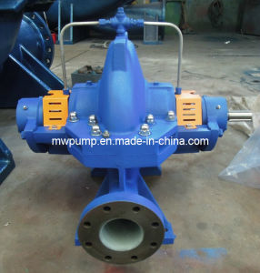 Centrifugal Pump 250s65 pictures & photos