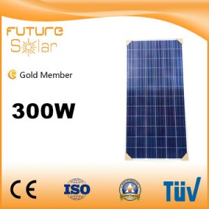 Great Quality 300W Poly Solar PV Module for Solar Power
