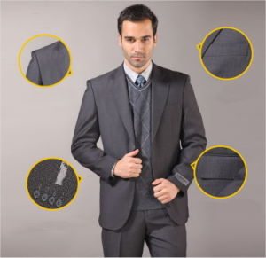 2013 New Design Customed Men′s Suit pictures & photos