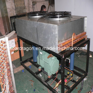 -35degree C Stainless Steel Blast Freezer Model (BF-2) pictures & photos