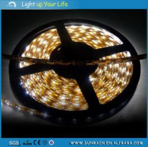 LED Strip Light IP20 5m/Roll 12V Indoor Use for Decoration pictures & photos