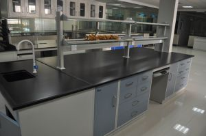 China 5 Year Warranty Agriculture Lab Steel Central Bench China