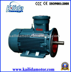 High Efficiency, Three-Phase Motor with CE, CCC Certificates pictures & photos