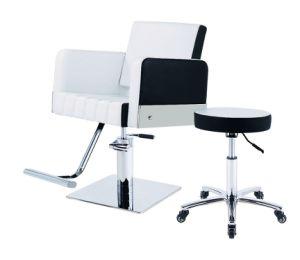 Superb Multi Purpose Reclining Salon Barber Chair C 15 Theyellowbook Wood Chair Design Ideas Theyellowbookinfo