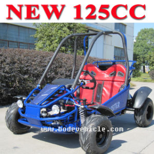 125cc Cheap 2 Seat Go Carts for Sale pictures & photos
