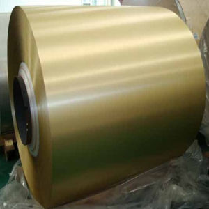 Coated Steel Coil with Galvanized (Ral1036) /PPGI Coil pictures & photos