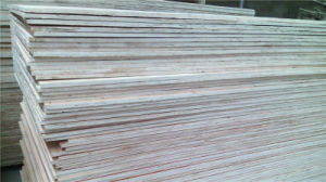 Commercial Package Grade 15mm, 17mm, 20mm Eucalyptus Plywood