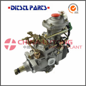 Fuel Injection Pump Nj-Ve4/12e1650r005 for 4D20 (486) pictures & photos