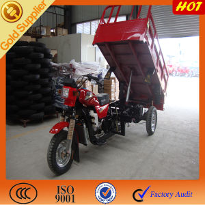 Heavy Draulic for Three Wheeled Chooper Truck/ Trimoto Cargo pictures & photos