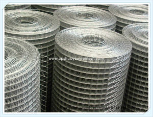 China Factory Directly Sale Stainless Steel Welded Wire Mesh / PVC ...
