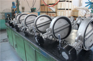 Stainless Steel Wafer Type Butterfly Valve with Ce ISO Wras Approved (CBF01-TA01)