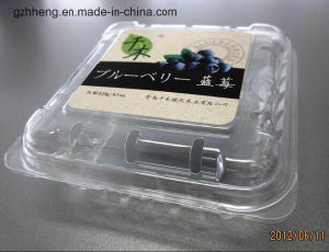 Clear Plastic PET Packing Box for Fruit/Vegetable(Plastic Tray) pictures & photos