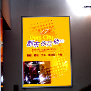 LED Slim Light Panel Display for Indoor Advertisement