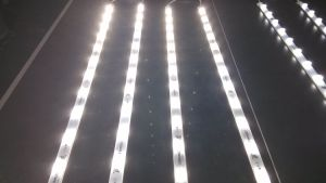 12W LED High Brightness Advertising Backlight Rigid Strip Light pictures & photos