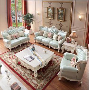 Furniture Thick Leather Sofa E113