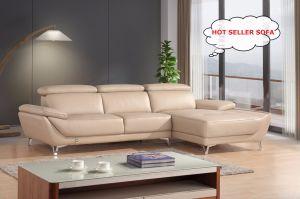 Italian Living Room Furniture Genuine Leather Sofa 1+2+3 Sofa (SBL-1716C)