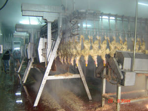 Poultry Slaughter House Equipment/ Chicken Slauthering Equipment