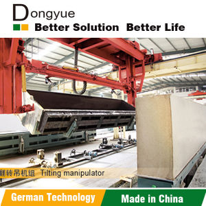Dongyue Brand AAC Bricks Machine in India (35 lines abroad in 6 countries, 10 lines in Indonesia) pictures & photos
