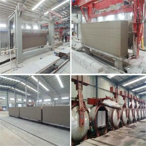 Autoclaved Aerated Concrete Brick Making Machine pictures & photos