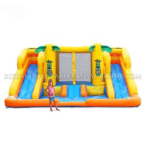 Rainforest Rapids Inflatable Combo Slide H1006 pictures & photos
