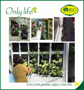 Onlylife Suprior 4 Planting Bags Vertical Planting Wall pictures & photos