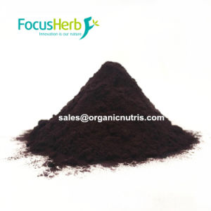 E1% E5-260 Natural Colorant Beetroot Red