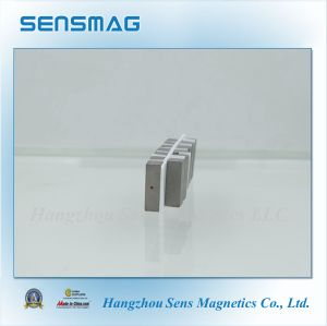 Strong Magnet Permanent Rare Earth Magnet with ISO9001