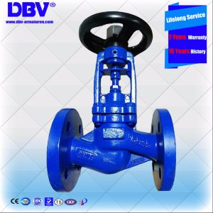 Industrial Bellows Sealing Dn32 Globe Valve