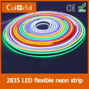 Big Promotion AC230V SMD2835 LED Neon Flex Rope Light pictures & photos