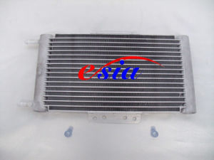 Auto Air Conditioning AC Condenser pictures & photos