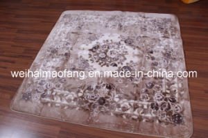 Raschel Mink Polyester Shaggy Decoration Carpet (NMQ-CPT013) pictures & photos