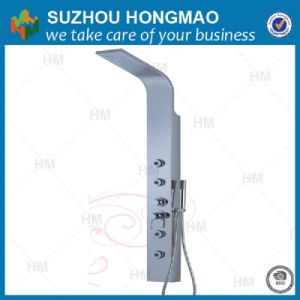 Stainless Steel Mirror Polished Massage Shower Panel