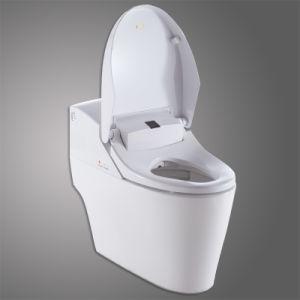 Astonishing China One Piece Slow Close Women Wc Bidet Spraying Toilet Frankydiablos Diy Chair Ideas Frankydiabloscom
