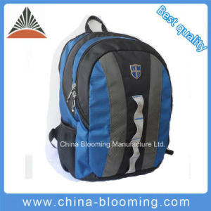 Travel Outdoor Hiking Laptop Sports School Backpack Bag pictures & photos