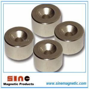 High Temperature Strong Permanent Neodymium Magnets pictures & photos
