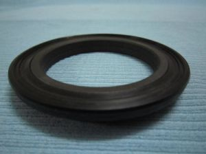 Oil Seal for Heavy Industry pictures & photos