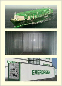 Consolidate Special Container Shipping Services From China to Singapore