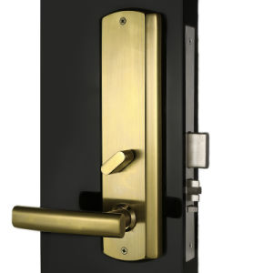 Modern Golden Mechanical Safe Mortise with Digital RF Card Electric Lock pictures & photos