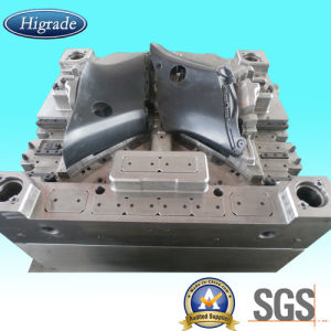 Injection Mould/Plastic Molding/Auto Injection Mould/Injection Mold/Mould pictures & photos