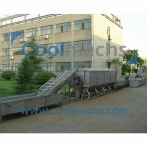Carrot Vegetable and Fruit IQF Frozen Production Line/Freezing Line pictures & photos