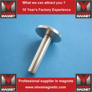 Neodymium Circular Disc Magnets Cylinder Rod Rare Earth Magnets