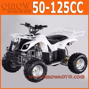 China 50cc - 110cc Mini Quad Wholesale pictures & photos