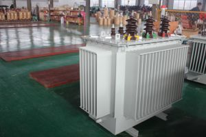 Made in China 3 Phase Oil Immersed Electrical Power Transformer pictures & photos
